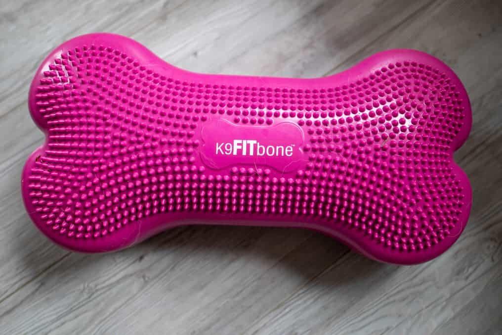 Fitbone zum Muskelaufbau