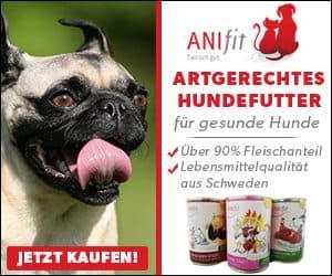 Anifit 10% Gutschein Aktion