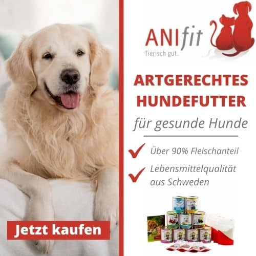Anifit Gutschein Aktion für Neukunden