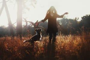 Hund anspringen abgewöhnen