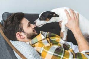 Hund leckt Herrchen