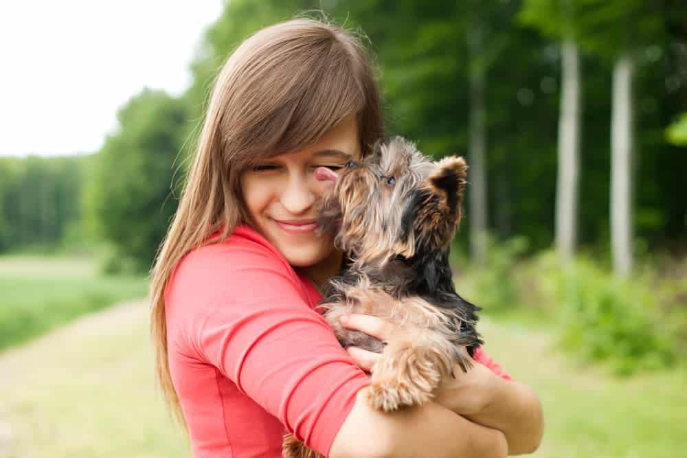 Hunde lecken auch aus Liebe