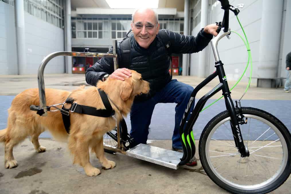 Mann mit Hund zeigt Dogscooter
