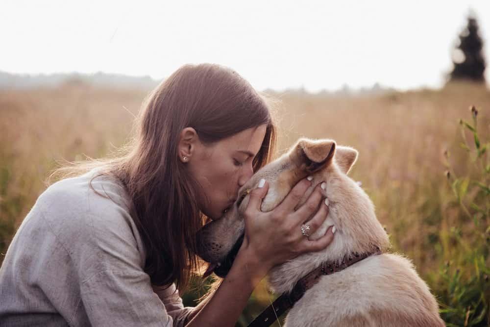 Online-Hundeschule Miriam Cordt