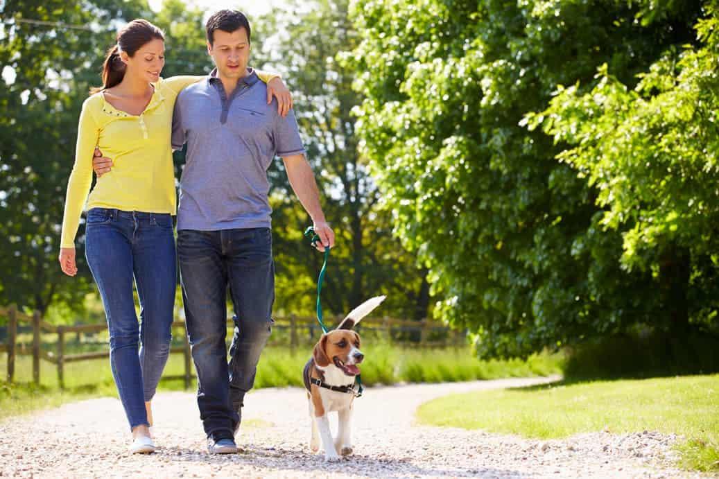 Paar geht mit Hund spazieren