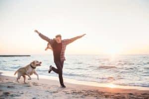 Immunsystem beim Hund