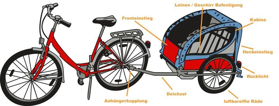 Fahrradanhänger für Hunde mit Fahrrad