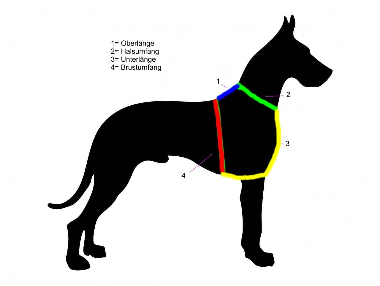 Ausmessen der richtigen Hundegeschirr Größe