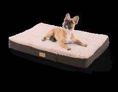 brunolie-hundebett-hundekissen-balu-beige-m-orthopaedisch-pflegeleicht-600×600