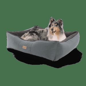 Hundebett Emma von Brunolie