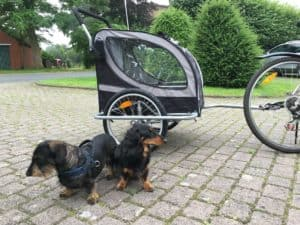 Fahrradanhänger für Hunde