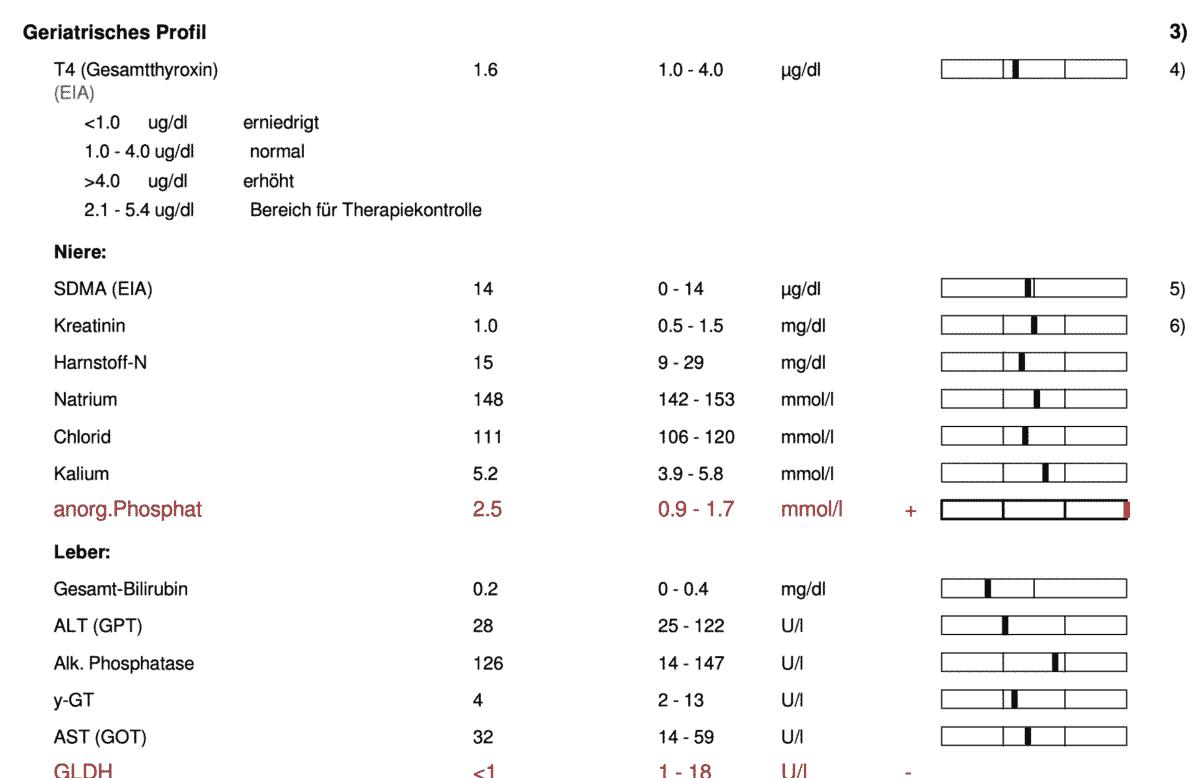 Ausschnitt des geriatrischen Profils vom Labor