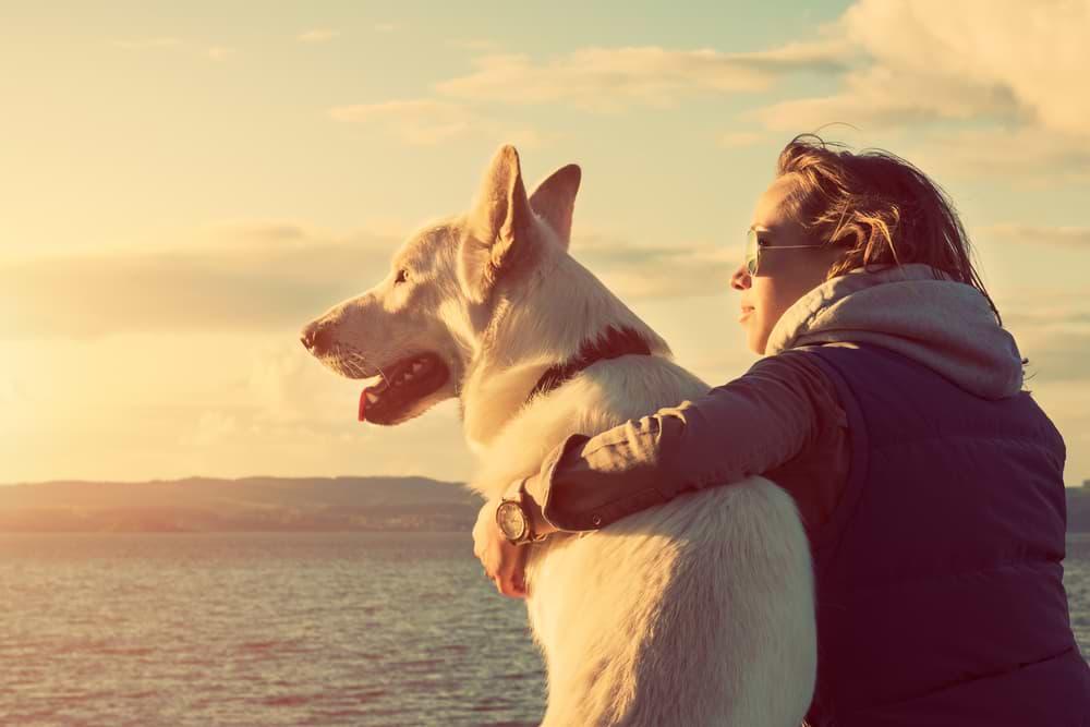 Frau sitzt mit Hund am Strand - Ruhe ist wichtig
