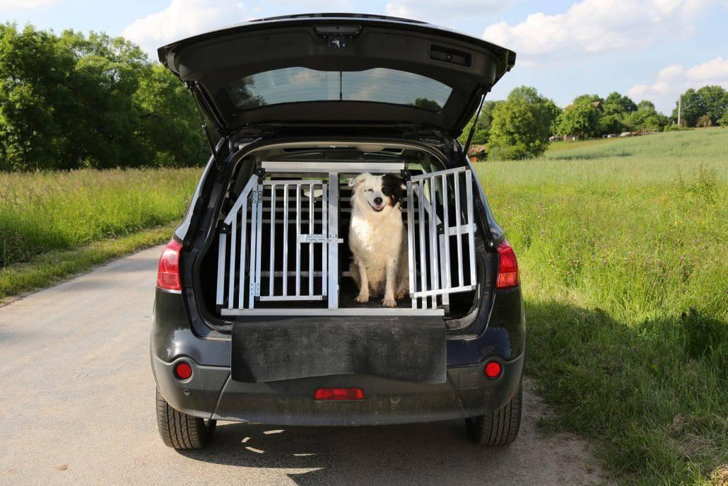 Hundetransportbox Alu im Kofferraum