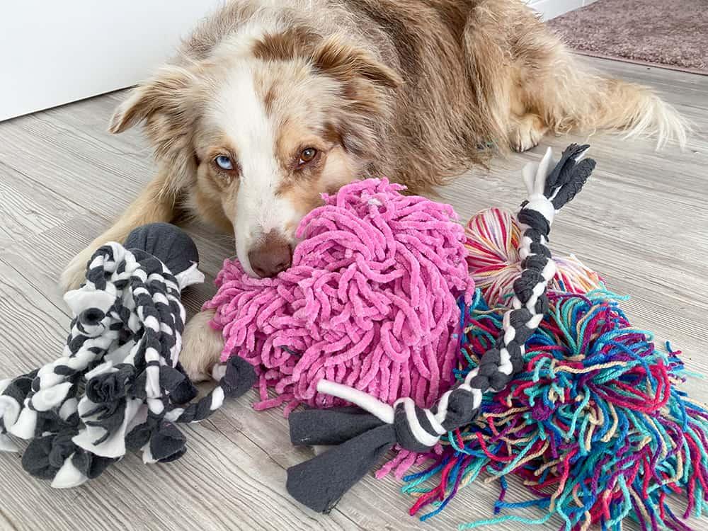 Spielzeuge für Hunde