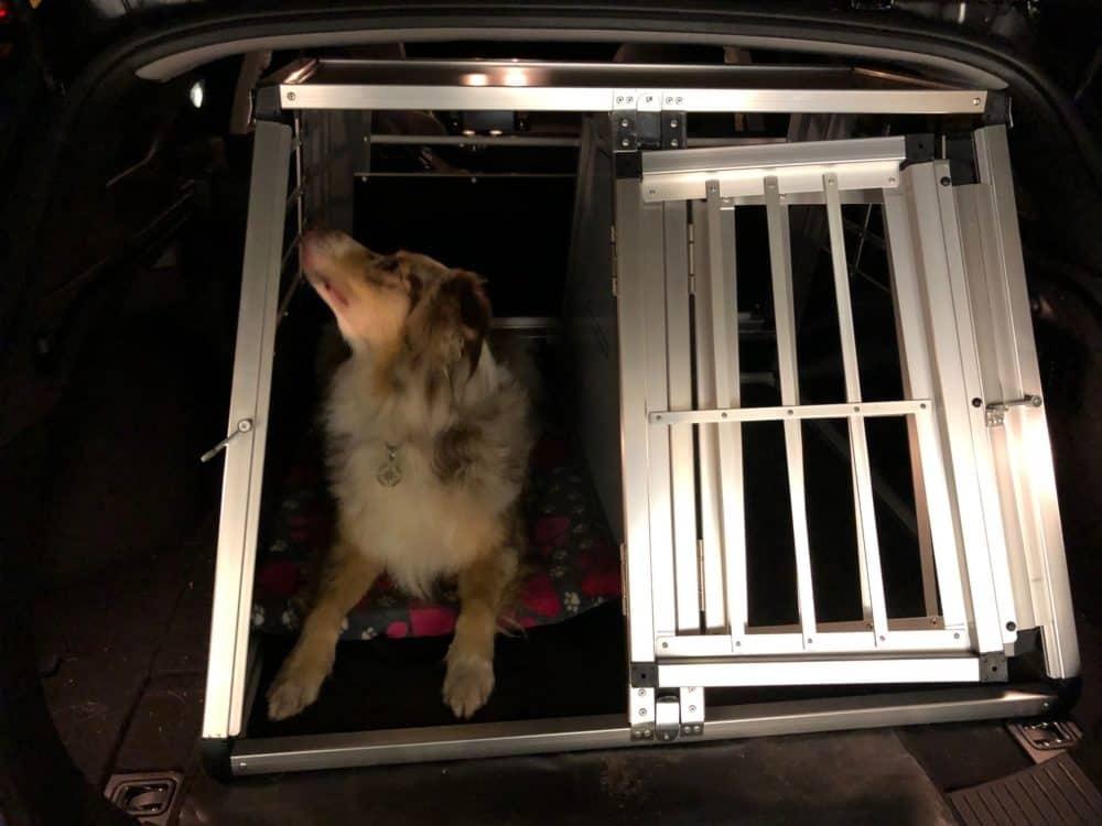 Hundebox in Alu