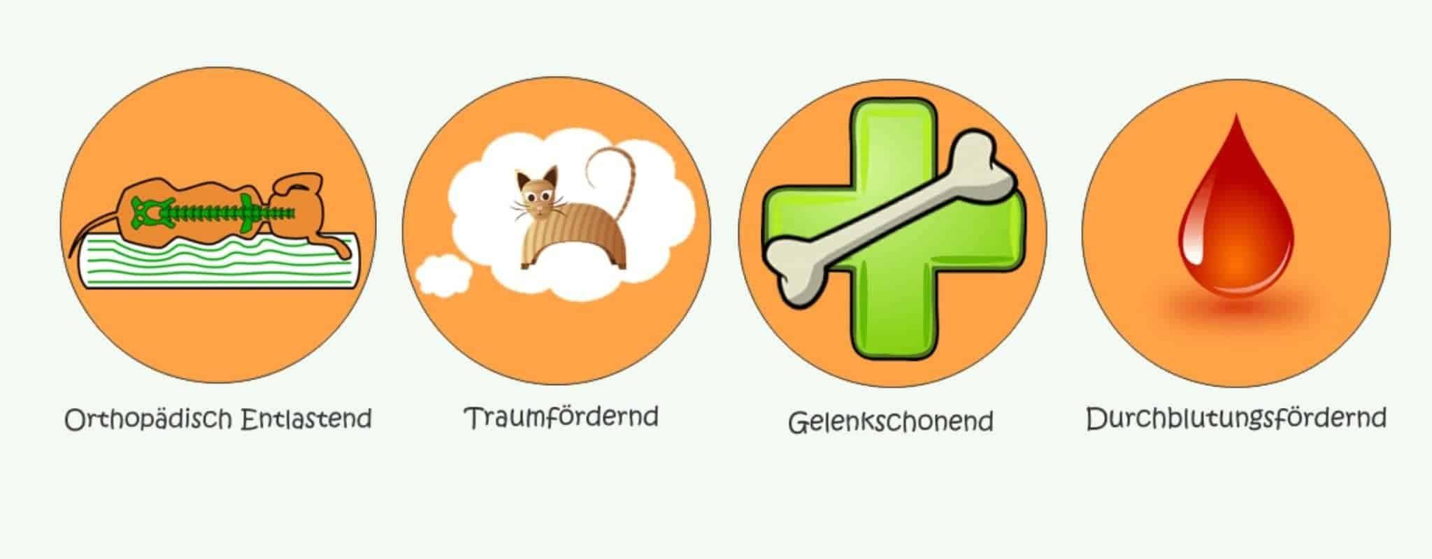 Vorteile orthopädischer Hundebetten Infografik